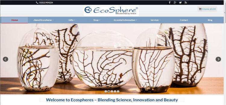 website-design-portfolio